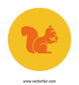 squirrel with a nut icon, block style