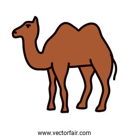 arabian camel icon, line and fill style