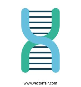 DNA chain icon, flat style
