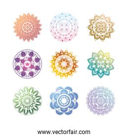 set of gradient mandalas on white background