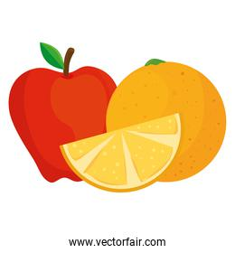 fresh fruits, red apple and orange, in white background