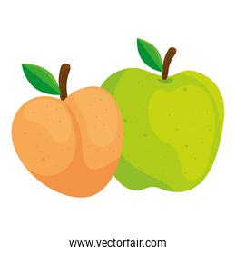 fresh fruits, peach and green apple, in white background