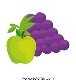 fresh fruits, grapes and green apple, in white background