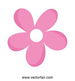pink flower petals ornament decoration isolated icon white background