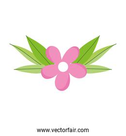 flower leaf petals nature decoration, isolated icon white background