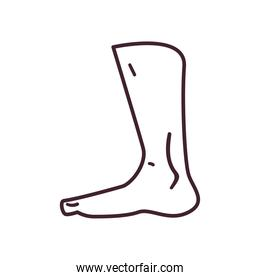 foot line style icon vector design
