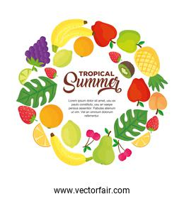 tropical summer banner, with round frame of fresh fruits