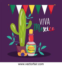 mexican independence day, cactus tequila bottle bunting decoration, viva mexico is celebrated on september