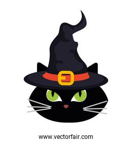 halloween, face of cute black cat with hat witch