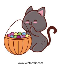 halloween, cute black cat and candies, in white background