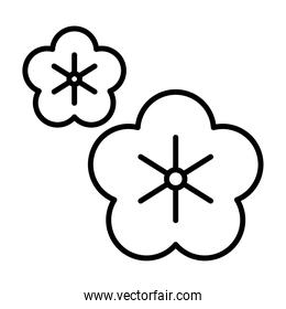 sakura flower asian floral decoration linear style icon