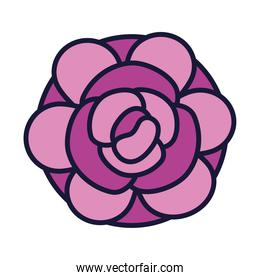 beautiful rose icon, line and fill style