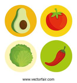 fresh and healthy vegetables on round frames