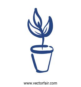 houseplant in ceramic pot free form style icon