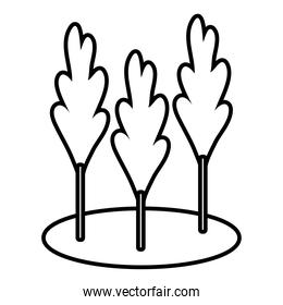 autumn trees cultivating plants ecology scene line style icon