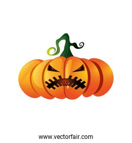 pumpkin with mystery face for halloween in white background