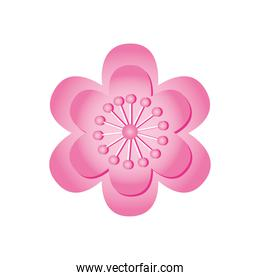 pink chinese flower icon, detailed style