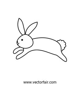 cute rabbit jumping, line style