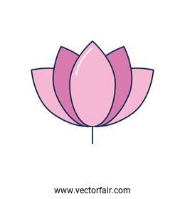 lotus flower icon, line fill style