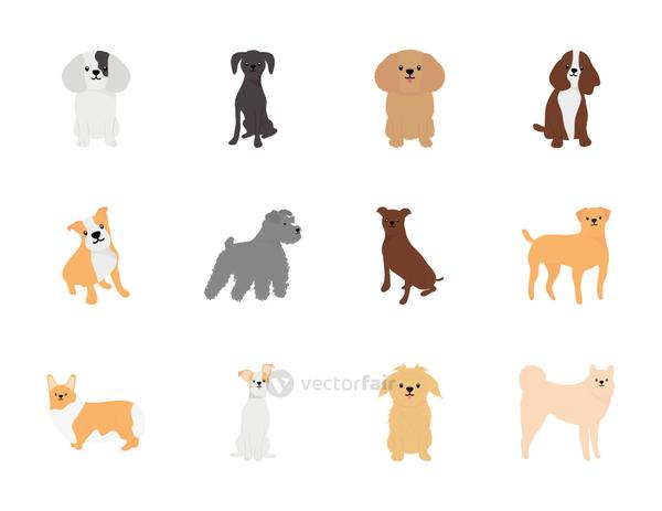 icon set of bulldog and dogs, flat style
