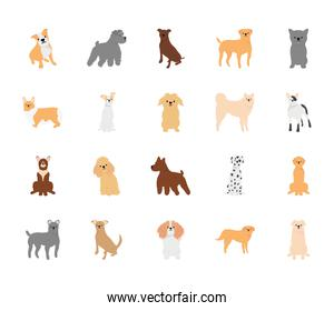 cartoon cute dogs icon set, flat style