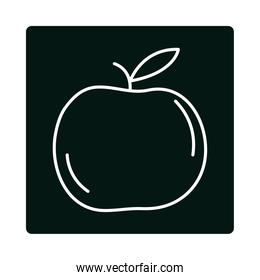 apple fruit fresh harvest food block and line icon