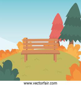 landscape in autumn nature scene, bench park in hill with trees forest