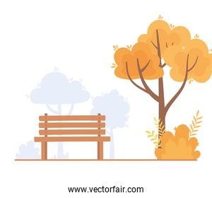 landscape in autumn nature scene, bench park tree branch bush design