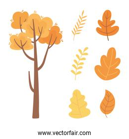 autumn nature tree branch leaf foliage icons collection