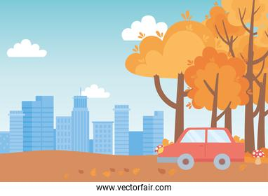 landscape in autumn nature scene, car in the path with mushrooms trees and cityscape background
