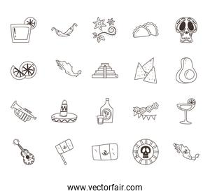 mexican flowers and free form line style icon set vector design