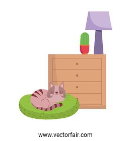 cat sleeping on cushion drawers with cactus and lamp isolated design