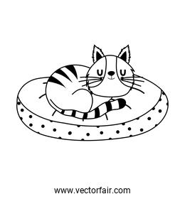 cute cat sleeping in cushion isolated icon line style
