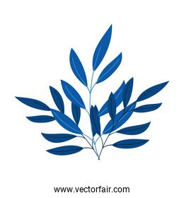 branches foliage leaves decoration nature isolated icon style
