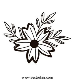 purple flower branch leaves foliage isolated icon line style