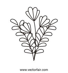 autumn flowers foliage leaves isolated icon line style