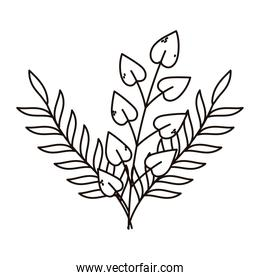 autumn branches foliage leaves isolated icon line style