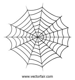 Isolated halloween spiderweb vector design