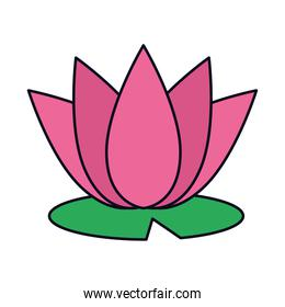 lotus flower icon, line and fill style