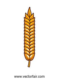 wheat spike beer isolated icon