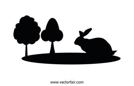 cute wild rabbit in forest silhouette