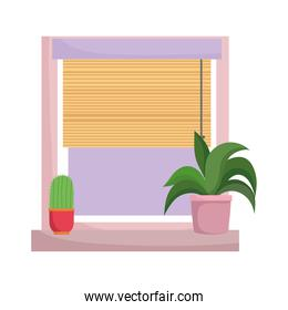 window potted plant and cactus decoration isolated design white background