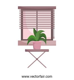 potted plan on table and window isolated design white background