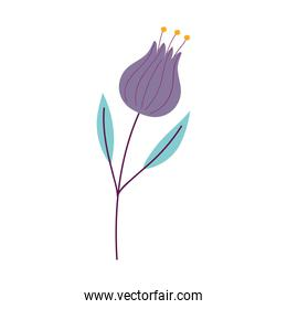 flower tulip petals leaves decoration isolated icon style