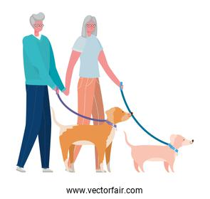 Senior woman and man cartoons with dogs vector design