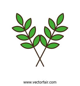 leaves line and fill style icon vector design