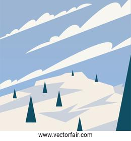 pine trees at snow and clouds vector design