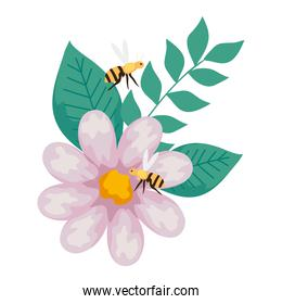 flower with bees flying, on white background
