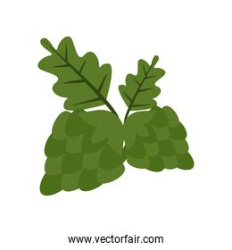 hop seeds flat style icon