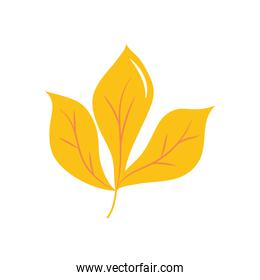 autumn leaves concept, chestnut leaf icon, flat style